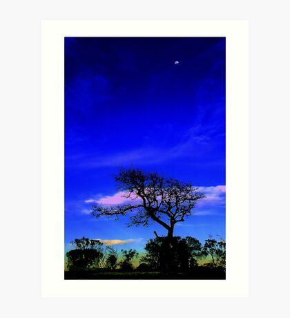 Evening Silhouette Art Print