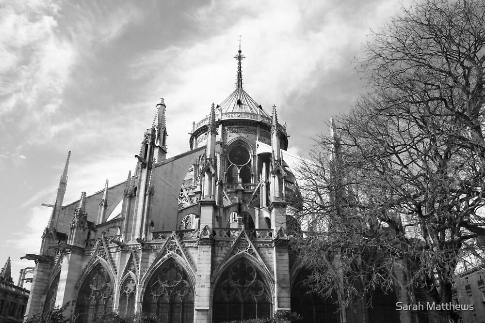 Notre Dame by Sarah Matthews