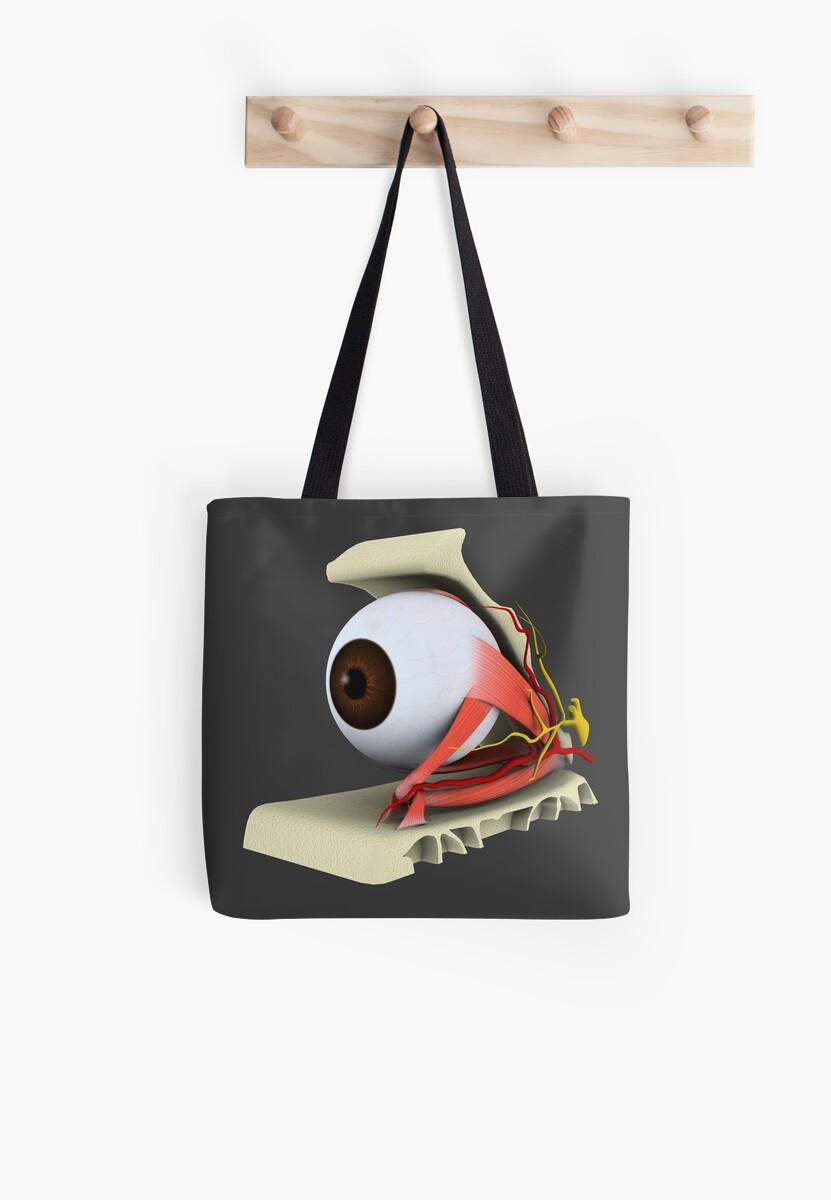 Bolsas de tela «Imagen conceptual de la anatomía del ojo humano.» de ...