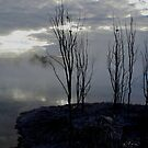 Rotarua lake mists at sunset III by Ashley Ng