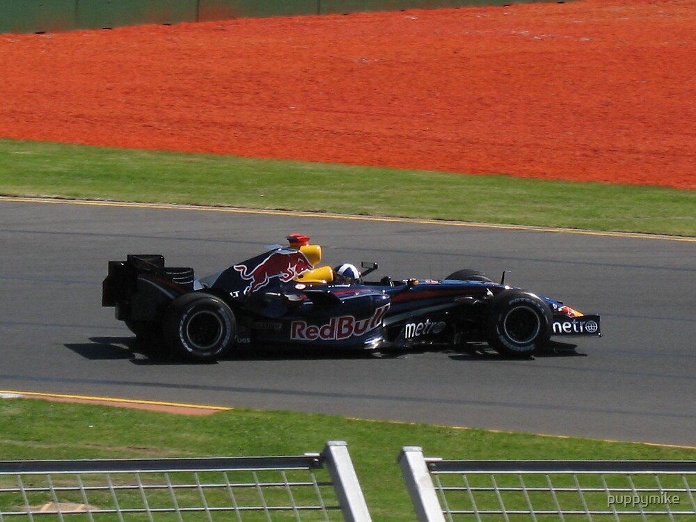 David Coulthard - Red Bull by puppymike