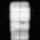 Twilight Window by Jaime Hernandez