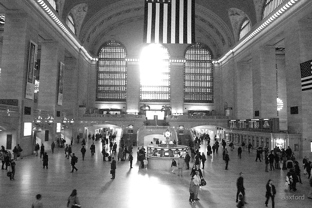 Central Station, New York by aaxford
