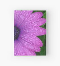 Purple African Daisy with Raindrops Hardcover Journal