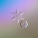 Real snowflake photo - Two hearts by Alexey Kljatov