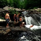 The Swimming Hole by Wayne King