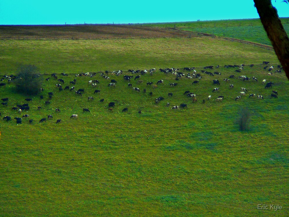 A SPRINKLING OF CATTLE ON THE HILLSIDE by Eric Kyle