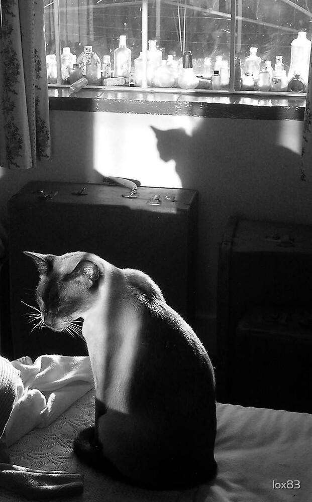 Vintage cat by lox83
