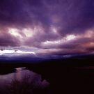 """Mistic Sky"" by Jaime Hernandez"