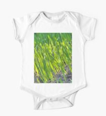 Morning Grass 2 Kids Clothes