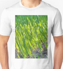 Morning Grass 2 T-Shirt