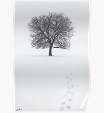 Solitude Footprints Poster