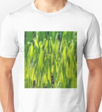 Morning Grass 8 T-Shirt