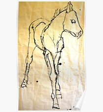 Anthony's Foal Poster