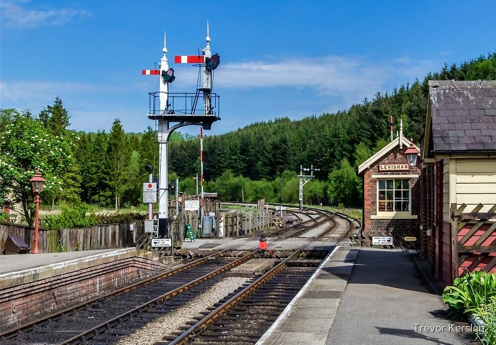 Levisham Station by Trevor Kersley