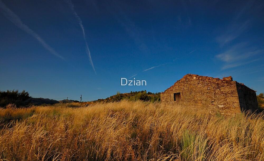 A Home in the Prairie by Dzian