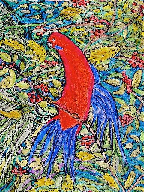 rosella by Susie a'Beckett