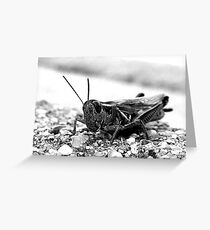 Hopper. Greeting Card