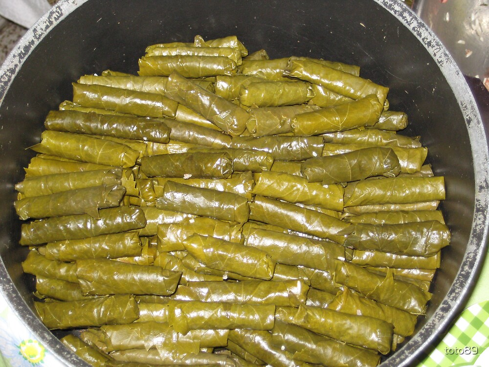 grapeleaves by toto89