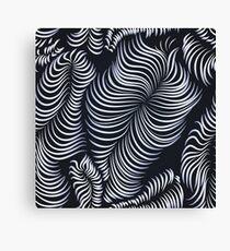 B&W illusion Canvas Print