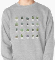 Succulents Pullover