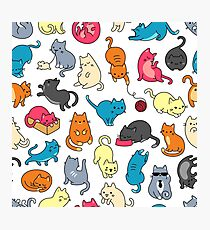 MEOW, COOL CATS! Photographic Print