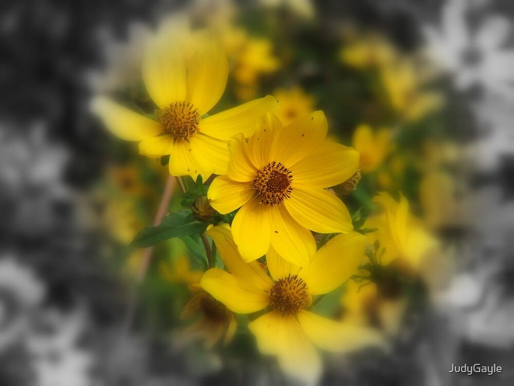 Gentle Brown Eyes by Judy Gayle Waller