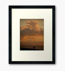 'Lonely'  Framed Print