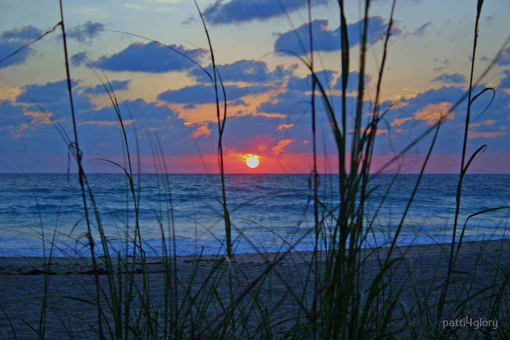 Florida sunrise by patti4glory