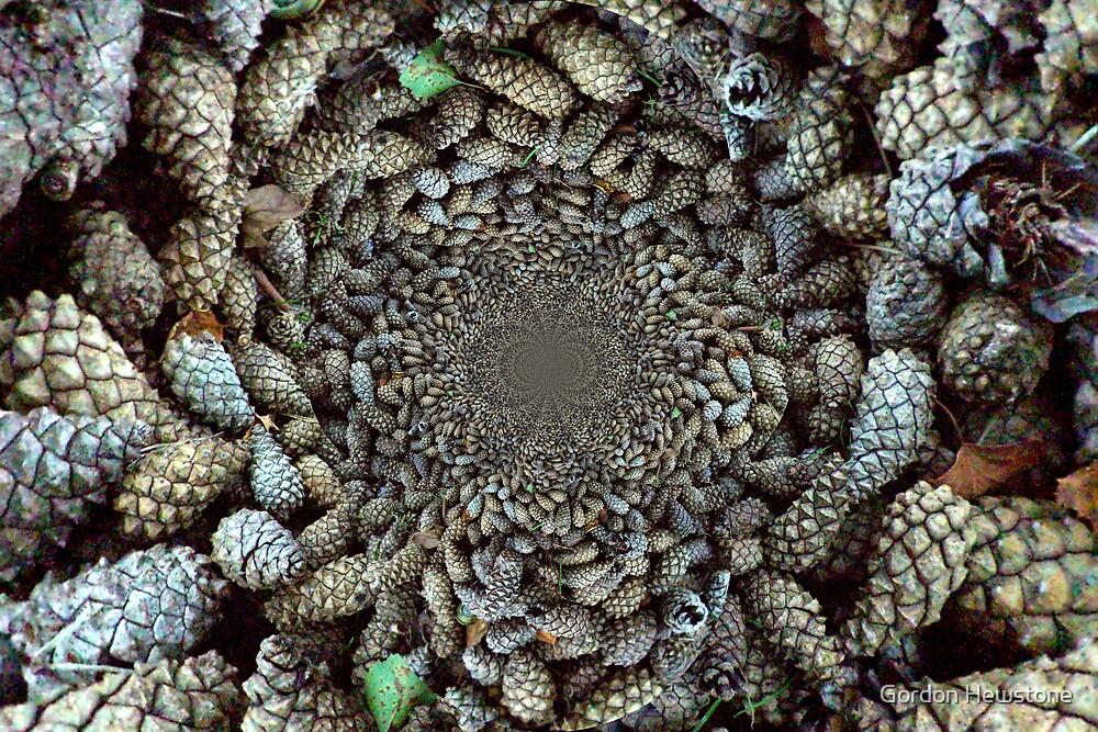 Pine Cones by Gordon Hewstone
