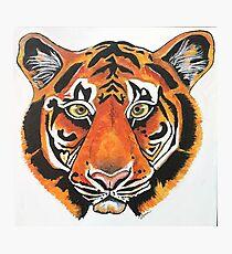 Tiger Mascot Photographic Print