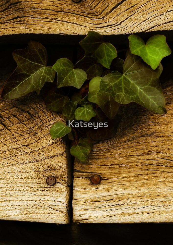 Determination by Katseyes