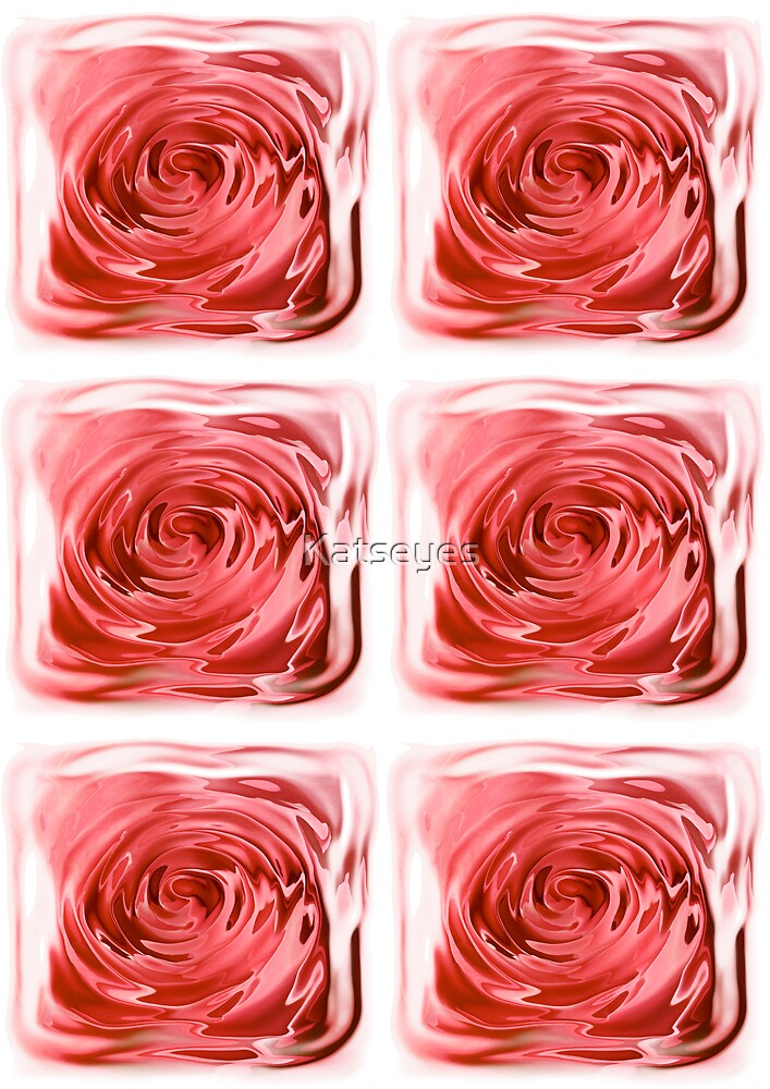 ROSES BEHIND GLASS  by Katseyes