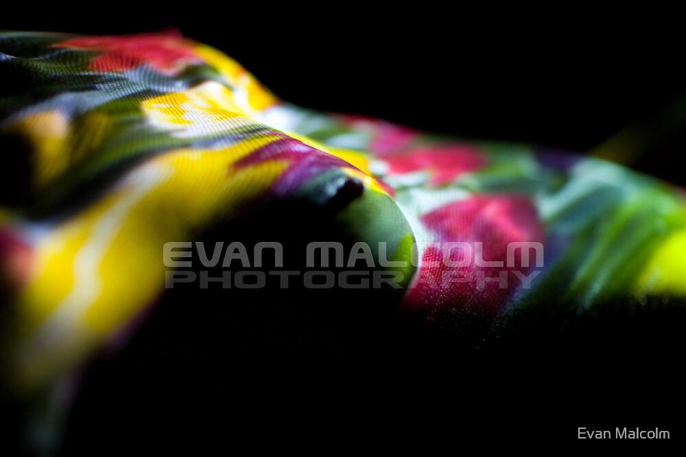 Natasha 9 by Evan Malcolm