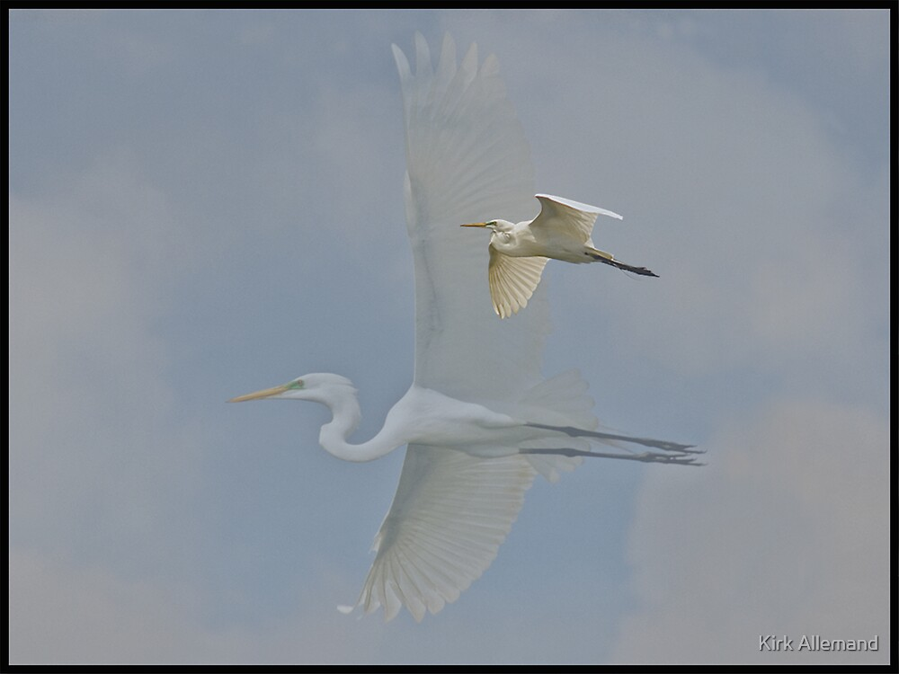 Great Egret Ghost by Kirk Allemand