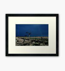 Rihanna Tree, County Down Framed Print