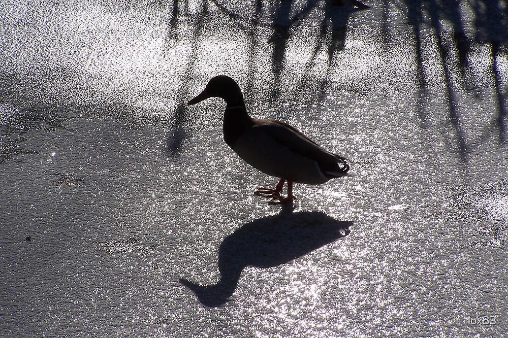 Dark duck by lox83