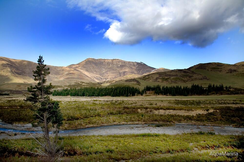New Zealand Lanscape by AquaMarina