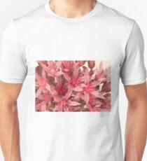 Pink Sedum Flower Macro Unisex T-Shirt