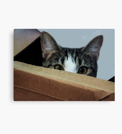 Peek-a-Boo, I See You!  Canvas Print