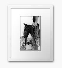 Ocala Framed Print