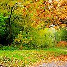 Autumn Season by Dawn Becker