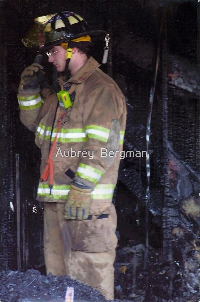 The Fireman by Aubrey  Bergman
