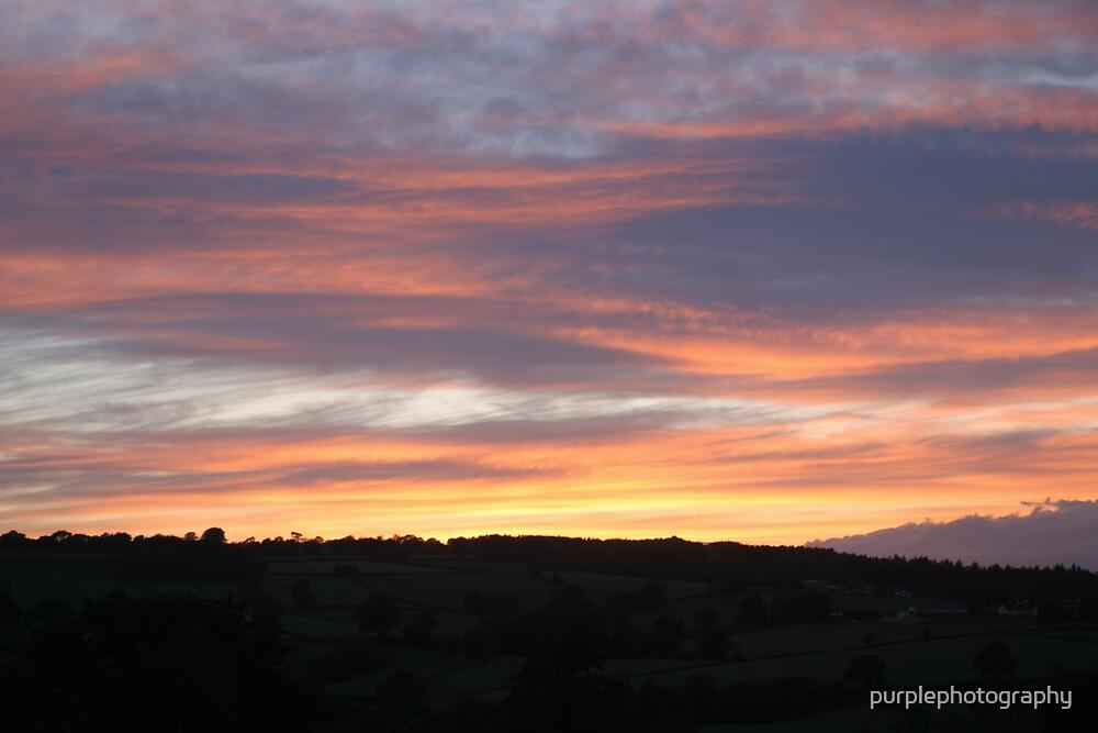 Night Sky by purplephotography