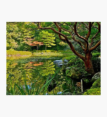 Heian Shrine pond garden, Kyoto, Japan Photographic Print
