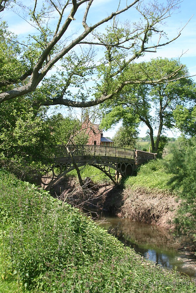 Small old bridge by Sue Hammond