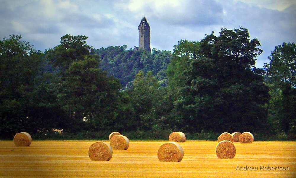 Wallace Monument by Andrew Robertson