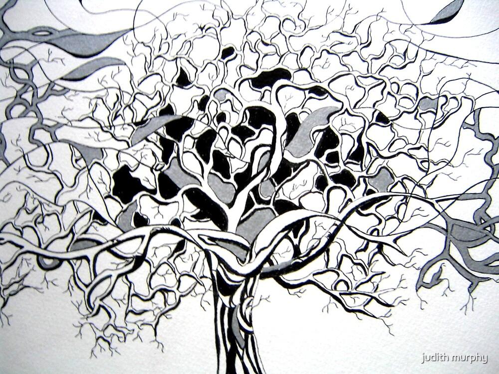 Winter tree by judith murphy