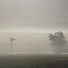 Foggy morning in SA. by poohsmate