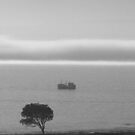 St Helena bay, SA by poohsmate